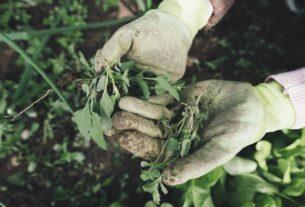 Gartenhandschuhe plastikfrei